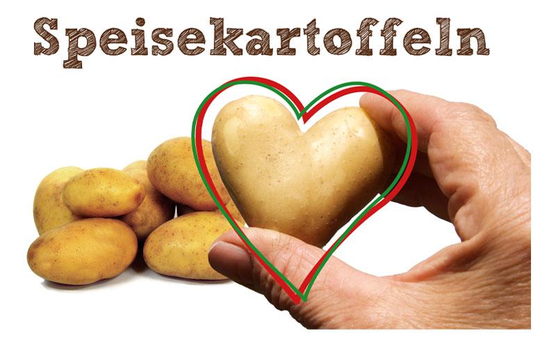 karsten-meyer_logo