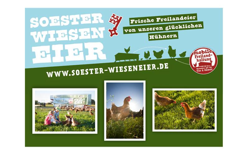soester-wieseneier_logo